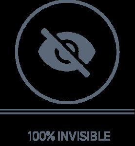 100% Invisible